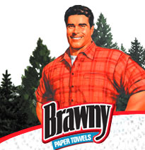 Aspirational marketing: Brawny Paper Towels gives the harried mom with a spill-happy toddler the vision of a clean kitchen.